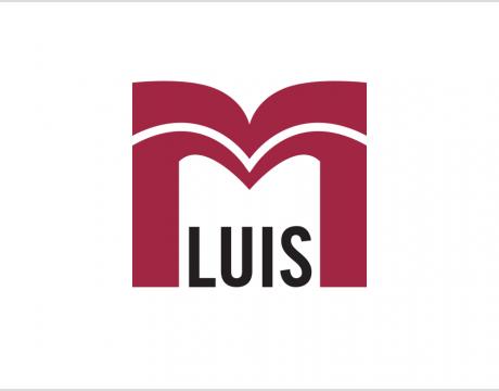 M Luis Construction